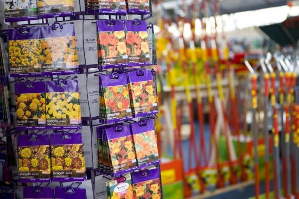3 причины не покупать семена в ярких красивых пачках